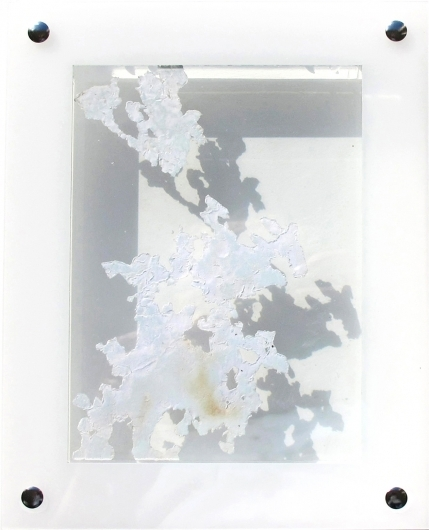 Dynamic organics II, 24x19x3.5 cm. _Y. Kieft 2015